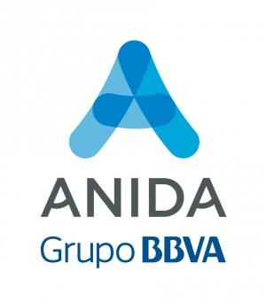 Anida Grupo BBVA azul V